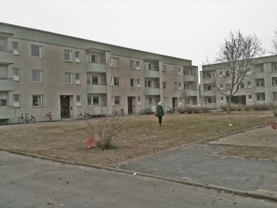 Stadsdelskampsveckan i Umeå